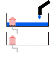 microgreen_siphon_step_2
